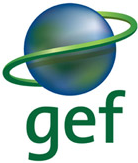 The GEF